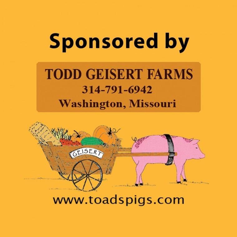 Todd Geisert Sponsor