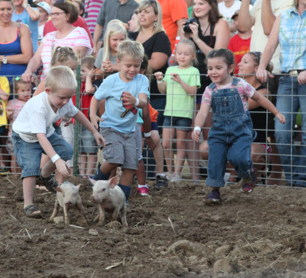 005 New Haven Youth Fair Pig Chase 2013.jpg