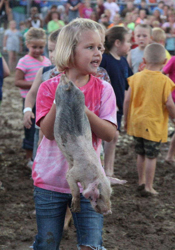 019 New Haven Youth Fair Pig Chase 2013.jpg