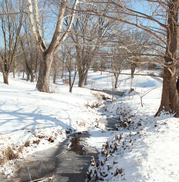 001 Snow Jan 2 2014.jpg