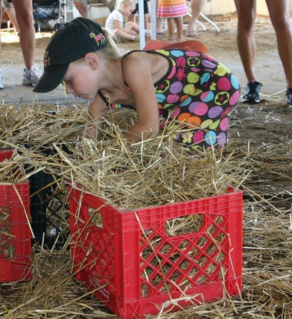 016 Fair Super Farmer Contest.jpg