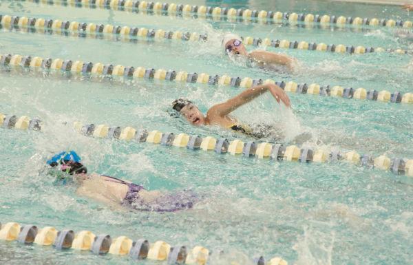 012 YMCA Swim Meet Jan 2014.jpg