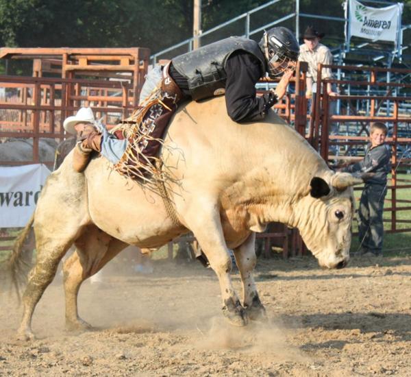005 Bull Ride.jpg