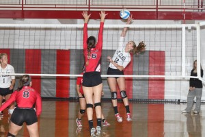 Lady Bulldogs Place Second