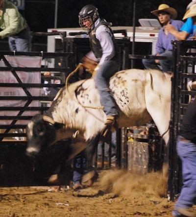 013 Fair Bull Riding.jpg