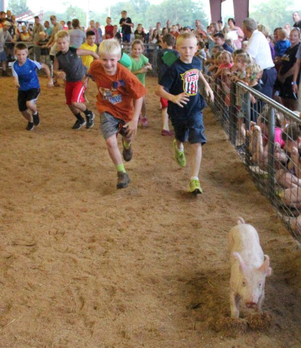 025 Pig Chase 2013.jpg