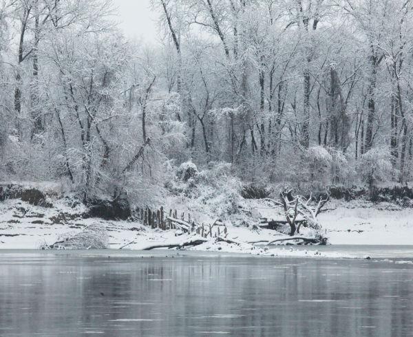 043 Snow December 14 2013.jpg