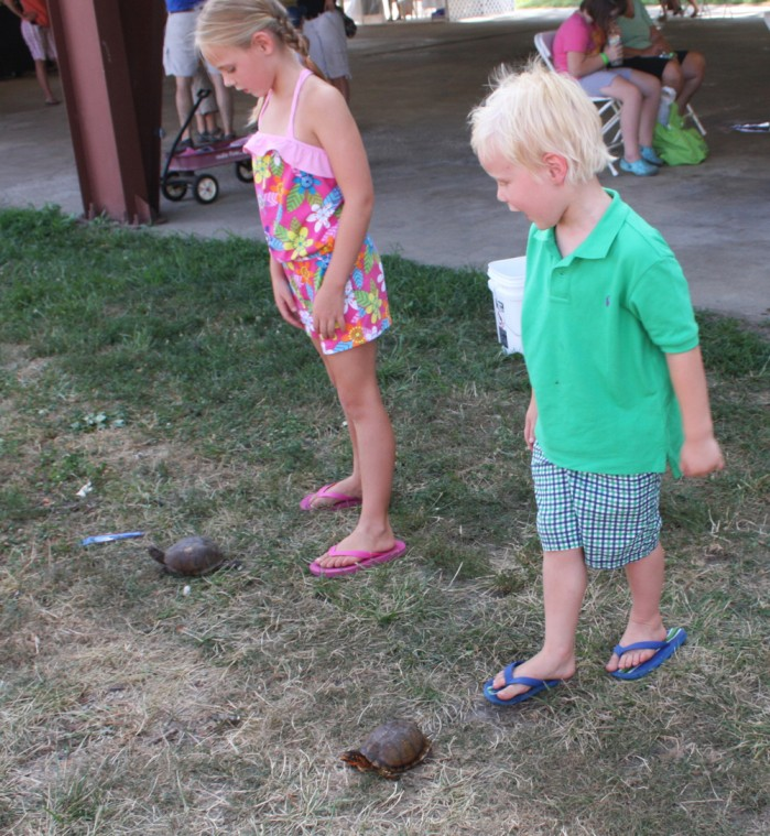 002 Fair Turtle Race.jpg