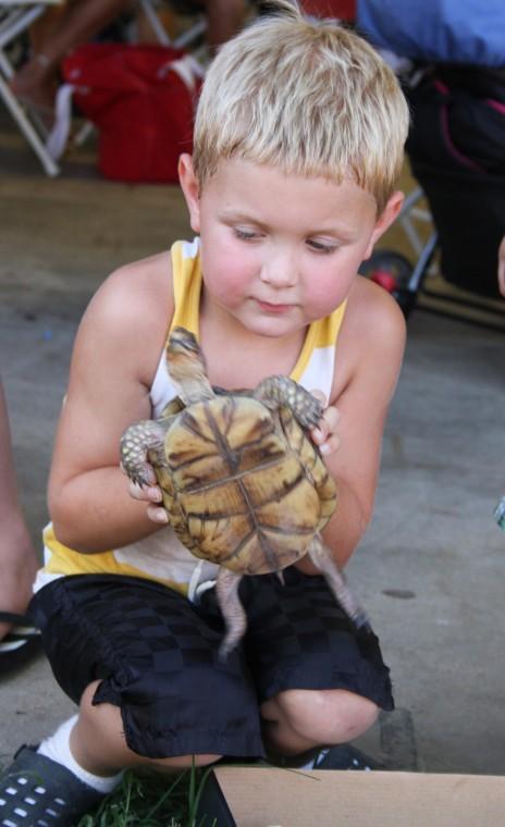 005 Fair Turtle Race.jpg