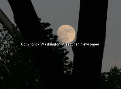 Summertime in Washington