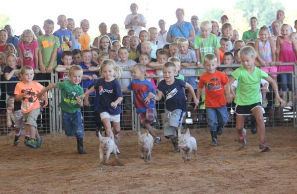 001 Fair Pig Chase 2014.jpg