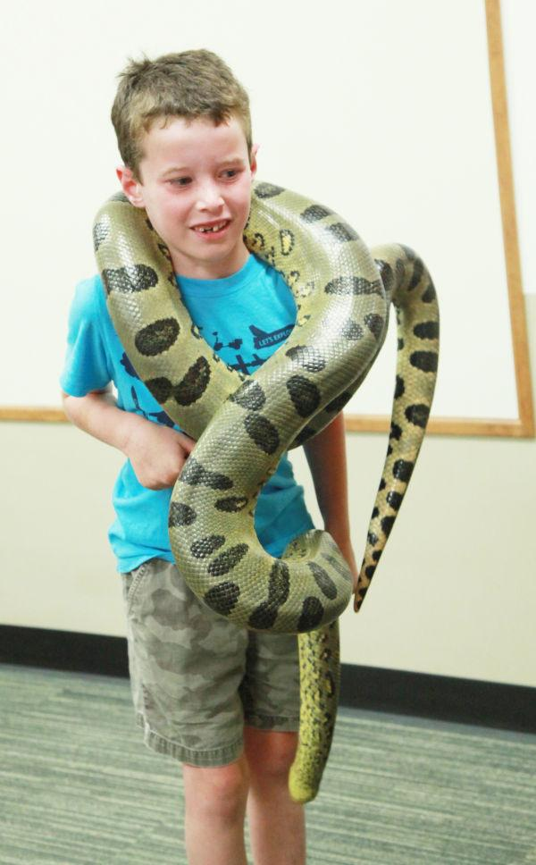 038 Reptile Show at Library 2014.jpg