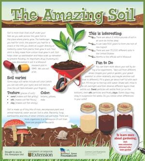 Amazing Soil Newspaper In Education Series