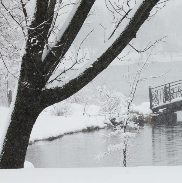 032 March Snow.jpg