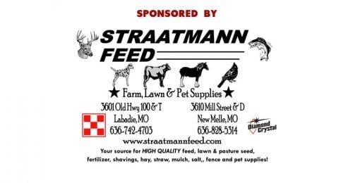 2012 Football Sponsor Straatmann Feed