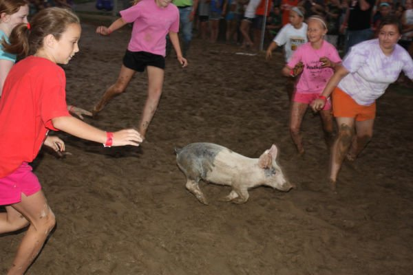 021 Franklin County Fair Pig Scramble.jpg
