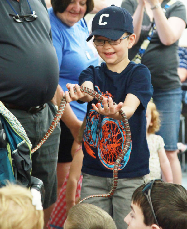004 Reptile Show at Library 2014.jpg