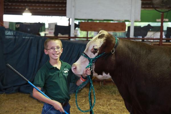 020 Fair Livestock.jpg