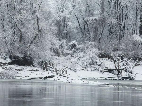 037 Snow December 14 2013.jpg