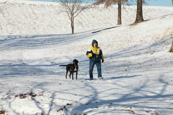 003 Snow Jan 2 2014.jpg