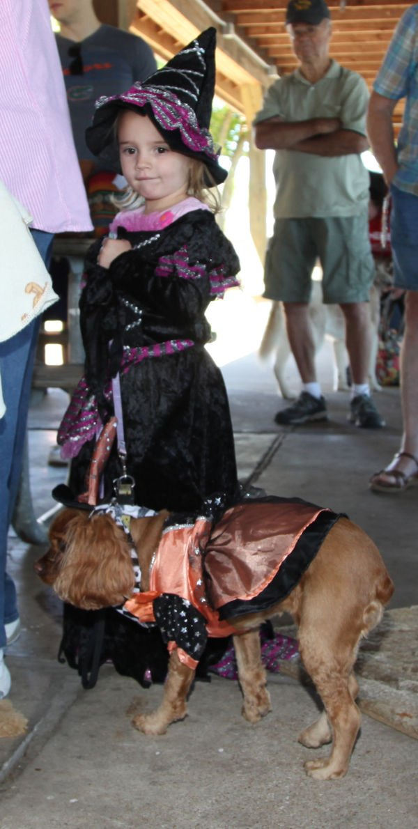 022 Strut Your Mutt 2013.jpg