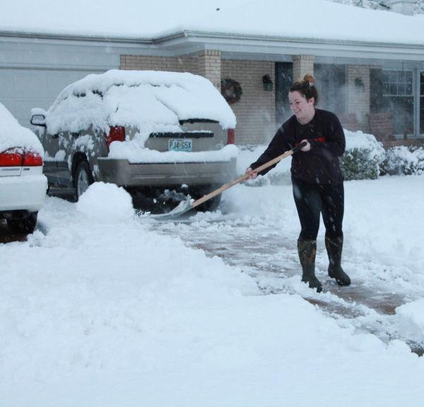 001 Snow December 14 2013.jpg