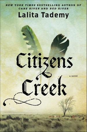 """Citizens Creek"""