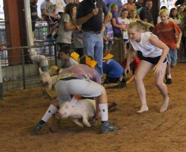 031 Pig Chase 2013.jpg