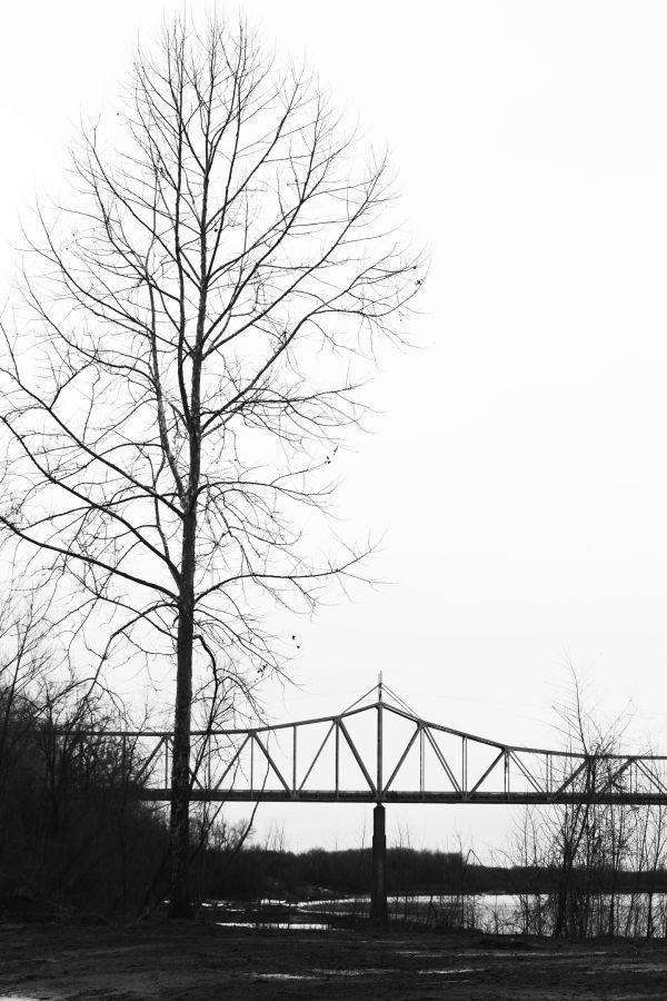 019 February Walk on Trail.jpg