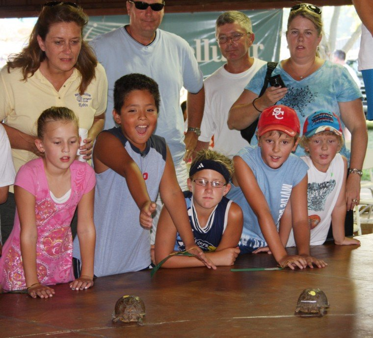 027 Fair Turtle Race.jpg