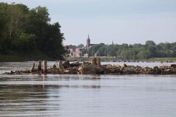 003 Pelicans on Missouri River.jpg