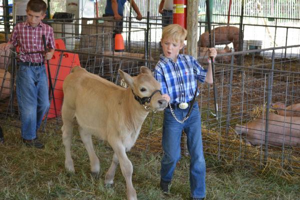 004 Franklin County Fair Friday.jpg
