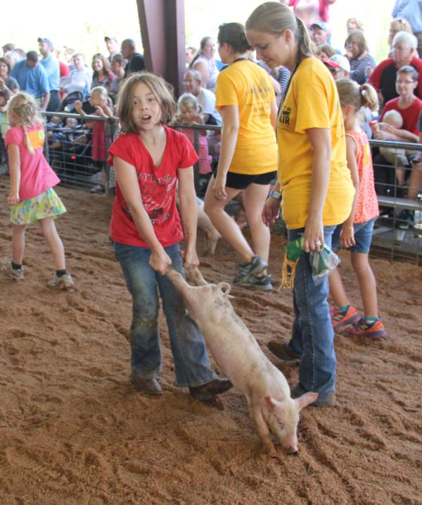 015 Fair Pig Chase 2014.jpg