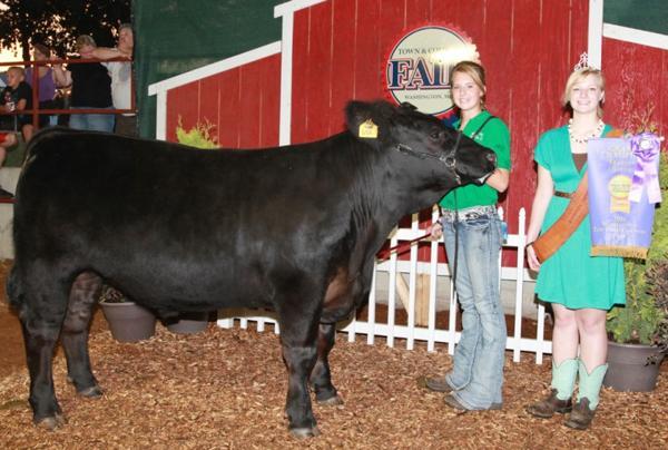 002 Fair Livestock.jpg