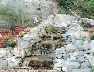 Water Is Flowing in Adam's Garden