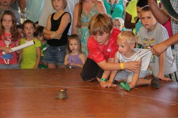 004 Turtle race 2013.jpg