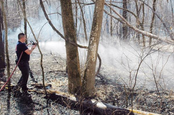 Battling Brush Fire