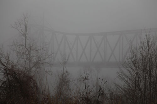 Foggy Washmo 014.jpg