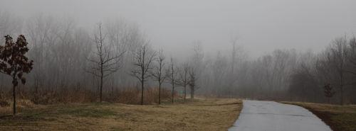 Foggy Washmo 010.jpg