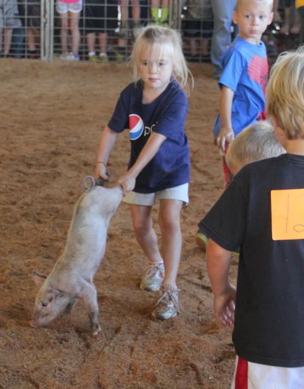 008 Fair Pig Chase 2014.jpg