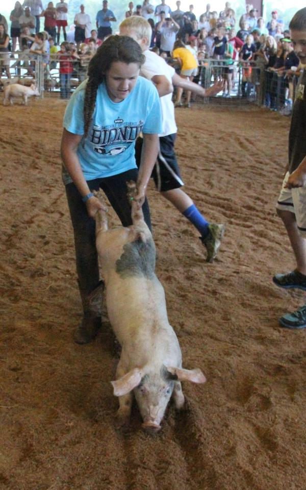 025 Fair Pig Chase 2014.jpg