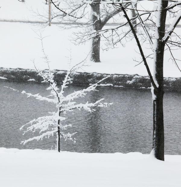 030 March Snow.jpg