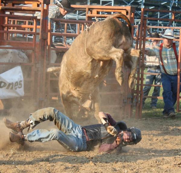 029 Bull Ride.jpg