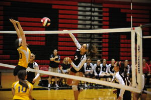Lady 'Cats Open With Victories