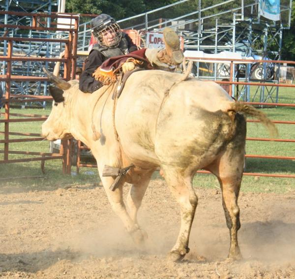 006 Bull Ride.jpg