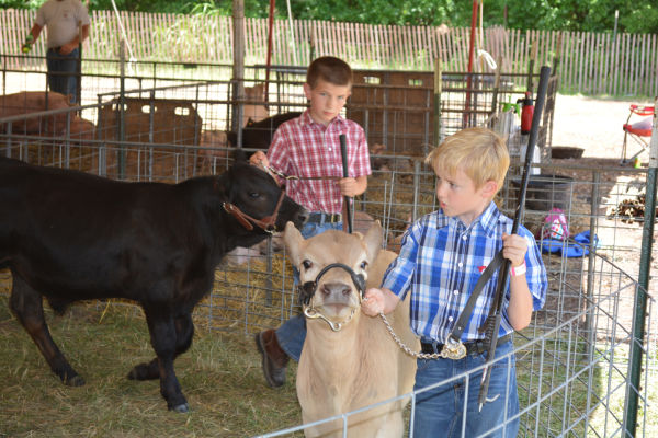001 Franklin County Fair Friday.jpg