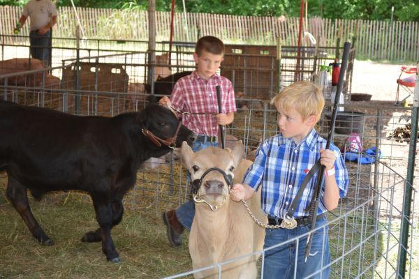 001 Franklin County Fair Friday.jpg