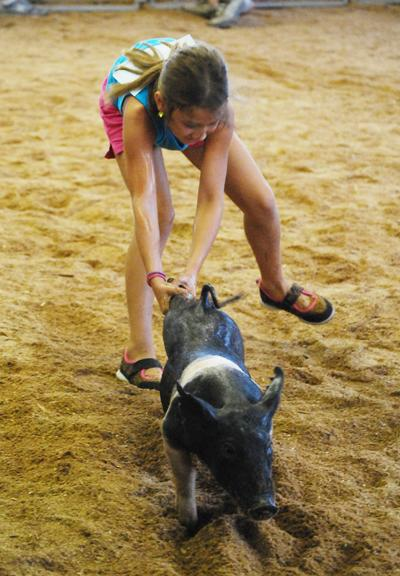 011 Washington Fair Pig Chase.jpg