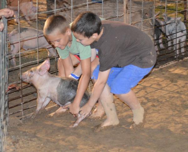 035 Franklin County Fair Thursday photos 2014.jpg