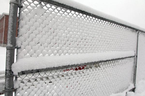 024 March Snow.jpg